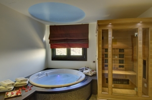 Suite Aqua, Iakovakis Suites Spa Koropi Pelion hotels spa Greece